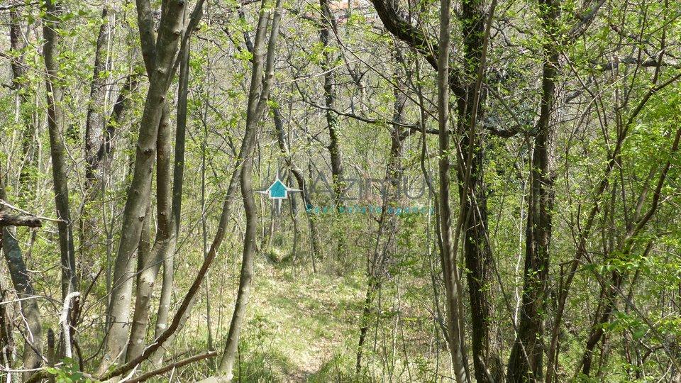 Land, 1000 m2, For Sale, Rijeka - Gornja Drenova