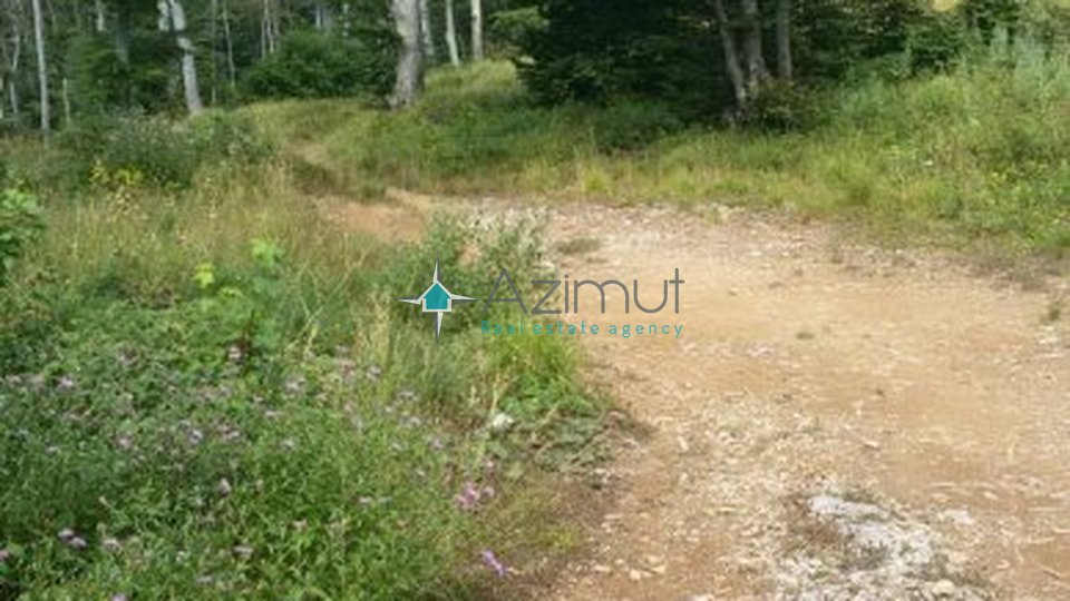 Land, 29685 m2, For Sale, Krasica