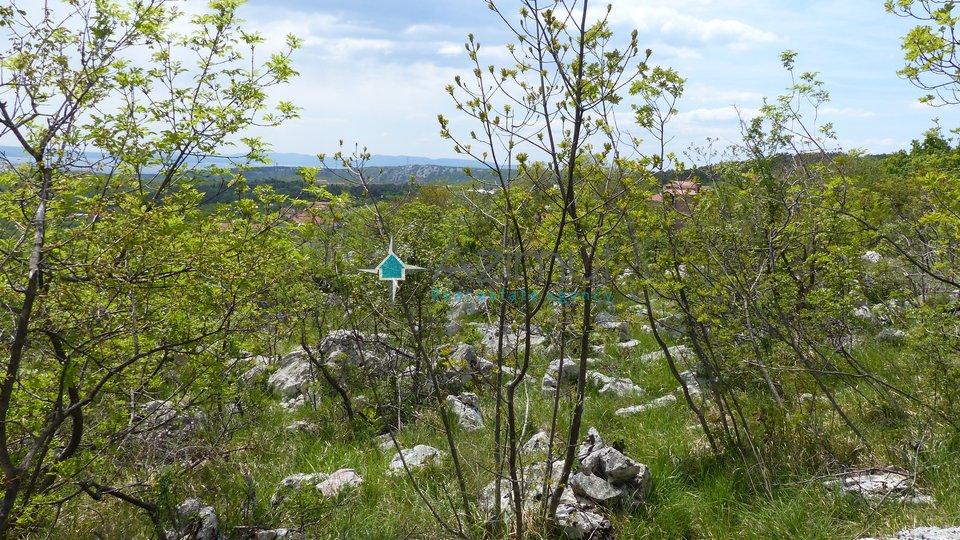 Land, 3700 m2, For Sale, Škrljevo