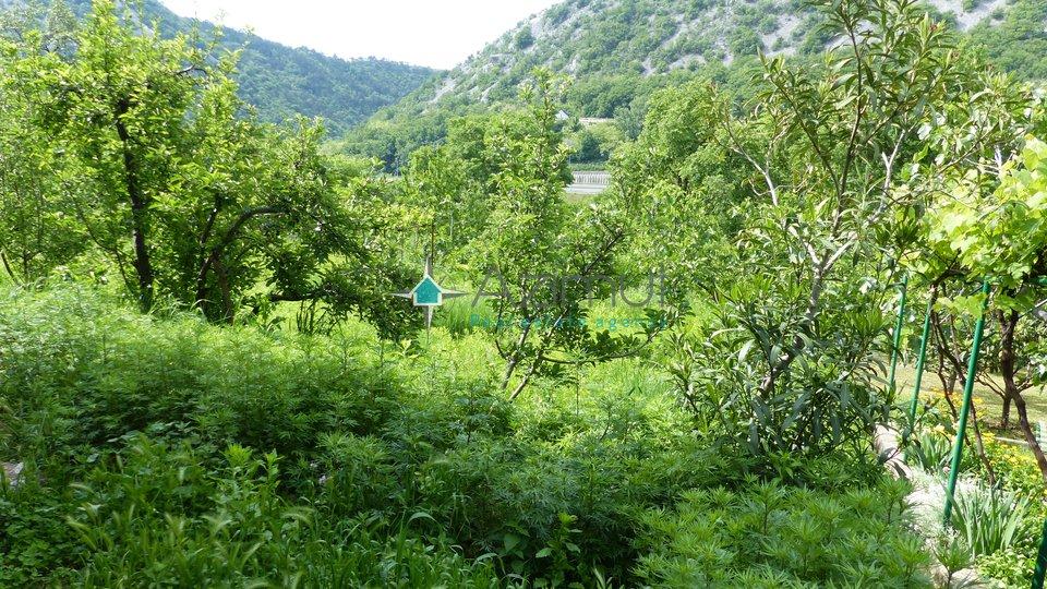 Rijeka, Sušačka Draga, samostojeća kuća, 240 m2